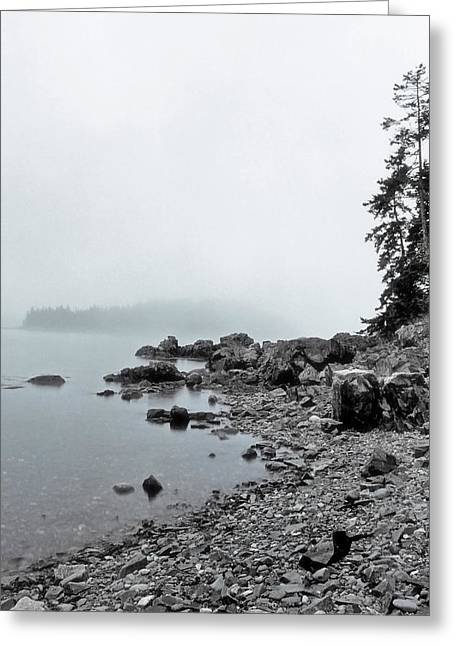 Crushing Stones Greeting Cards - Otter Cliffs Greeting Card by Joann Vitali