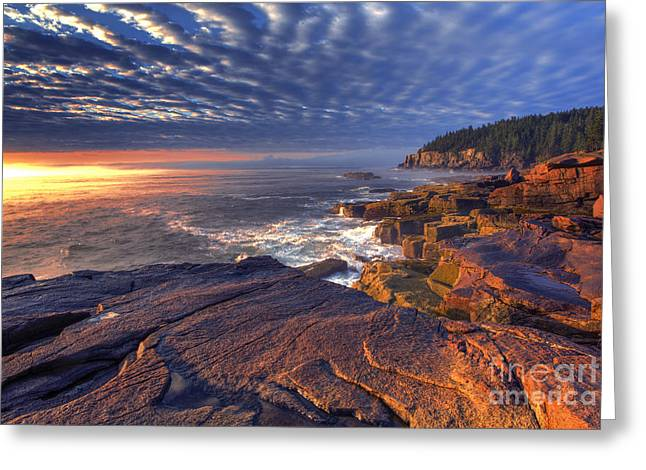 Acadia National Park Photographs Greeting Cards - Otter Cove Sunrise Greeting Card by Marco Crupi