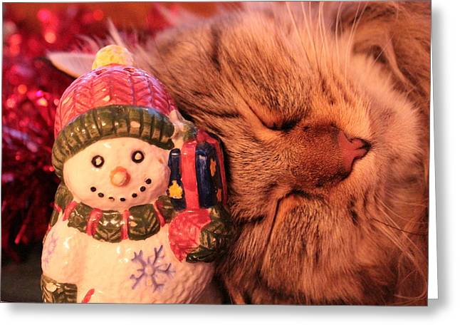 Catnap Greeting Cards - Our Favorite Ornament Greeting Card by Christine Rivers