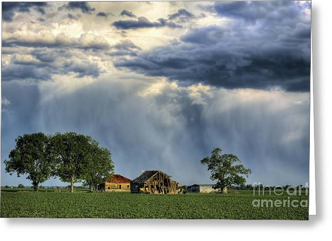 Farm Stand Greeting Cards - Our Last Year Standing Greeting Card by Gary Holmes