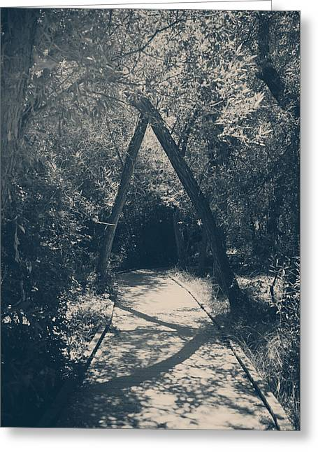 Nature Preserve Greeting Cards - Our Paths Will Cross Again Greeting Card by Laurie Search