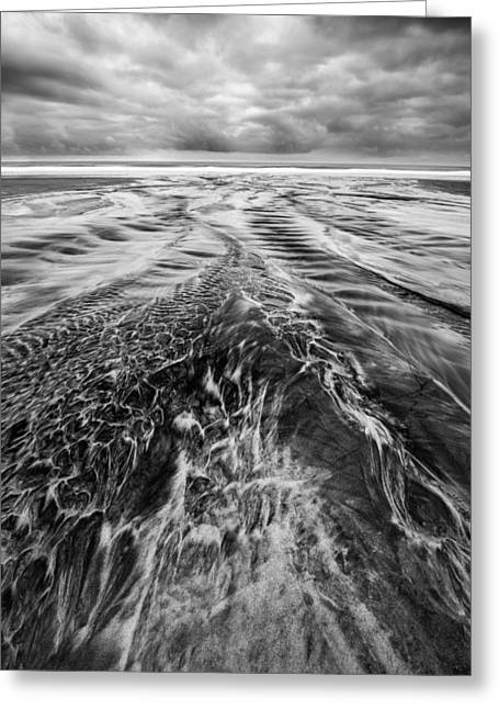 Coastal Preserve Greeting Cards - Out and Back Greeting Card by Alexander Kunz