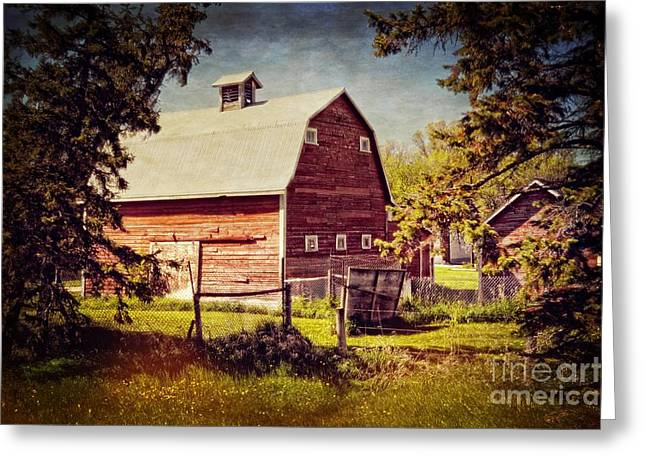 Barn Yard Mixed Media Greeting Cards - Out in the Country Greeting Card by Dorothy Pinder