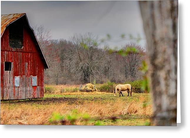 Rural Indiana Greeting Cards - Out In The Country Greeting Card by Off The Beaten Path Photography - Andrew Alexander