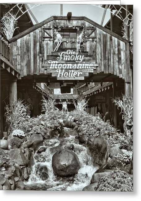 Gatlinburg Tennessee Greeting Cards - Out In The Holler Greeting Card by Dan Sproul
