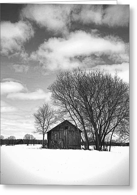 Old Barns Greeting Cards - Out In The Sticks Greeting Card by Thomas Young