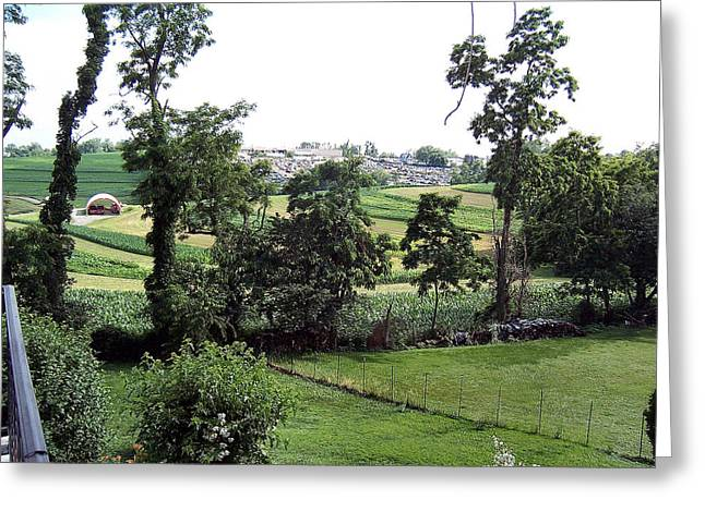 Distance Framed Prints Greeting Cards - Out My Back Door Greeting Card by Joy Reese