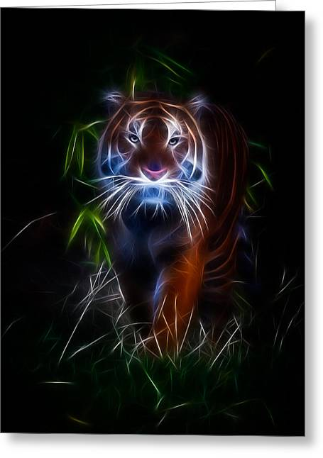 Bobcats Greeting Cards - Out Of Darkness Greeting Card by Athena Mckinzie