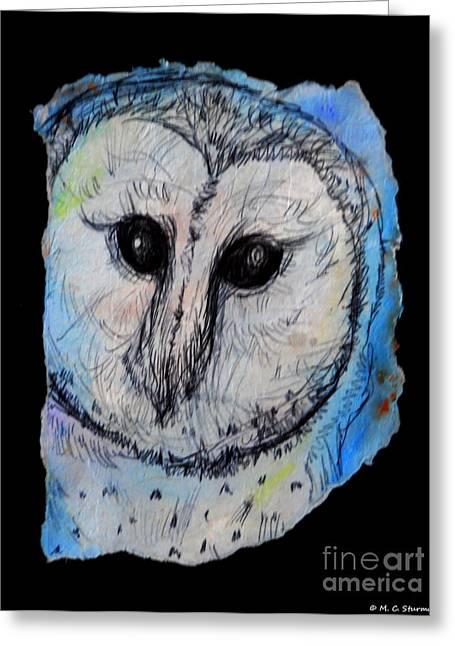 Barn Pen And Ink Greeting Cards - Out of the Dark Greeting Card by M C Sturman