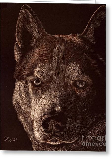 Huskies Drawings Greeting Cards - Out of the darkness Portrait of a Husky Greeting Card by Margaret Sarah Pardy