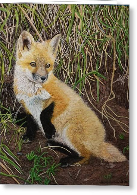 Fox Kit Paintings Greeting Cards - Out of the Den Greeting Card by Laurie Cartwright