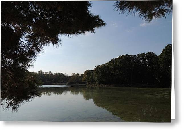 Herrick Lake Greeting Cards - Out of the Pines Greeting Card by Teresa Schomig