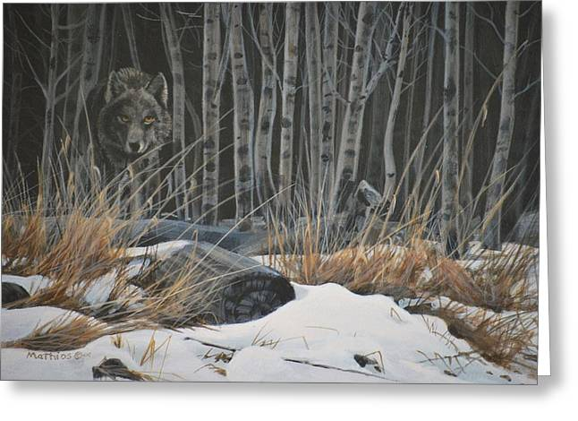 Peter Mathios Greeting Cards - Out of the Shadows - Wolf Greeting Card by Peter Mathios
