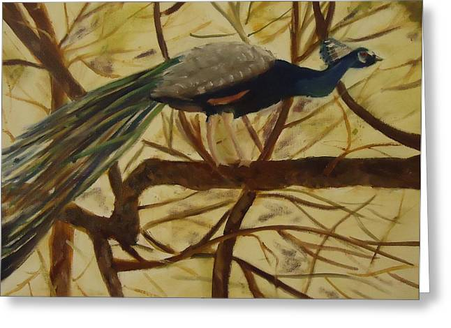 Out On A Limb Greeting Card by Betty Pimm