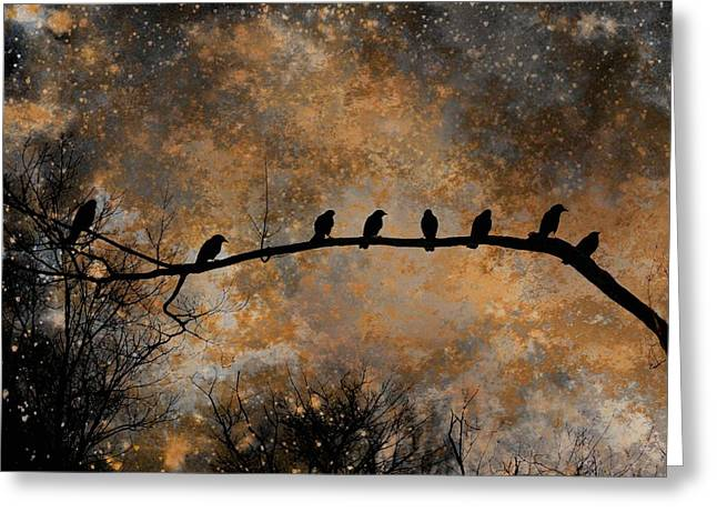 Photos Of Birds Greeting Cards - Out On A Limb Greeting Card by Gothicolors Donna Snyder