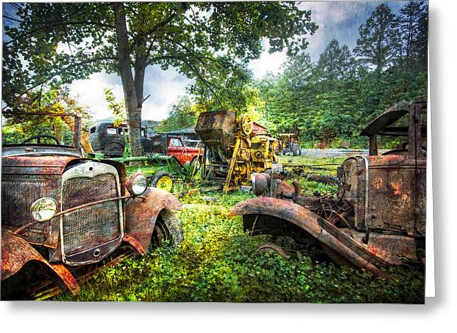 Tennessee Farm Greeting Cards - Out To Pasture Friends Greeting Card by Debra and Dave Vanderlaan