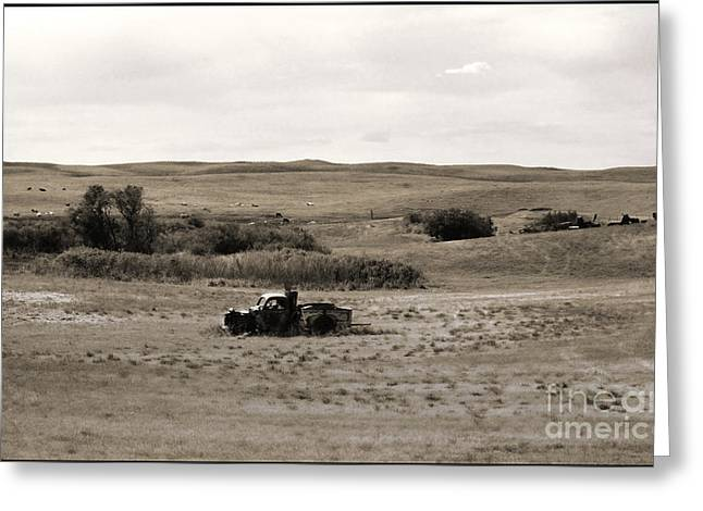 Rust Bucket Greeting Cards - Out to Pasture Greeting Card by Thomas Bomstad