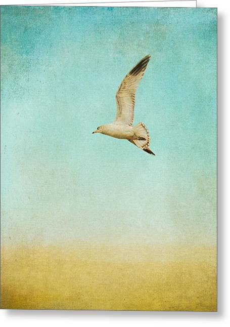 Larus Delawarensis Greeting Cards - Out To Sea - Wildlife - Seagull Greeting Card by Jai Johnson