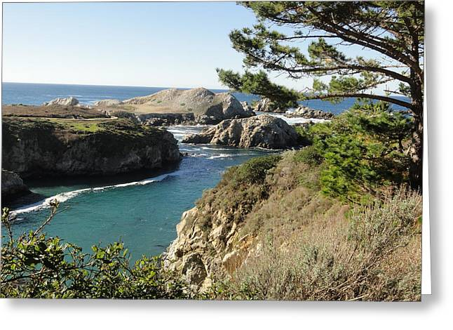 Point Lobos Greeting Cards - Out To Sea Greeting Card by Shannon Grissom