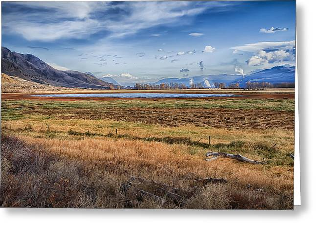 Kamloops Greeting Cards - Out West  Greeting Card by Theresa Tahara