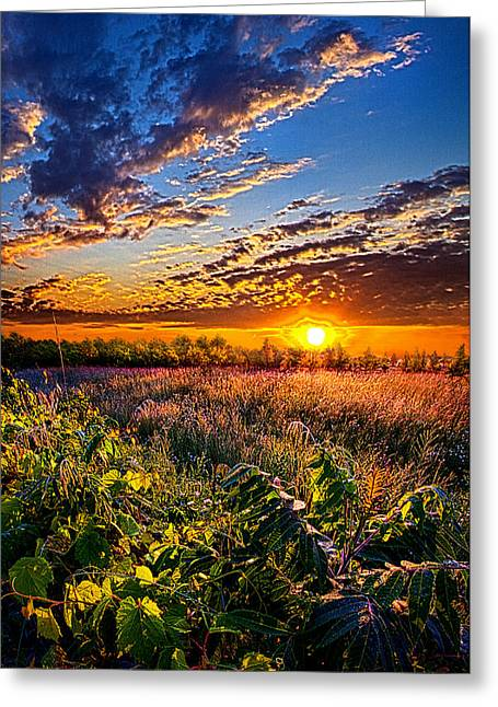 Shadows Greeting Cards - Out Yonder Greeting Card by Phil Koch