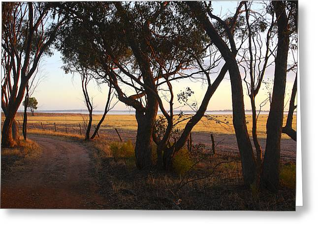 Niel Morley Greeting Cards - Outback Track Greeting Card by Niel Morley