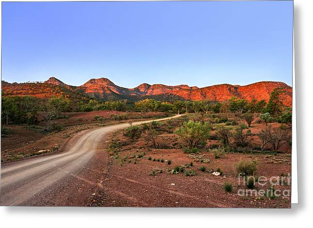 Barbed Wire Fences Greeting Cards - Outback Track Greeting Card by Ray Warren