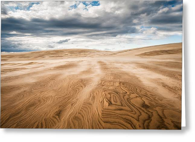 Atlantic Beaches Greeting Cards - Outer Banks Jockeys Ridge State Park - Swept Away Greeting Card by Dave Allen