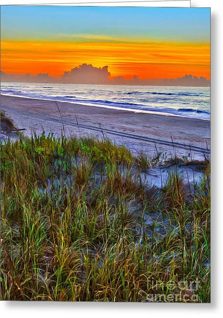 Paint Photograph Greeting Cards - Outer Banks - Ocracoke Sunrise with Sand Dune Plants Greeting Card by Dan Carmichael