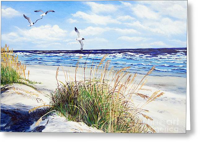 Gull Greeting Cards - Outer Banks Greeting Card by Pamela Nations