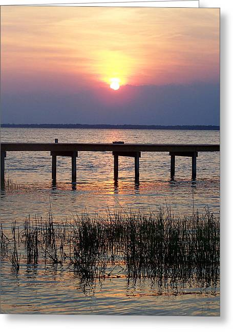 Sandi Oreilly Greeting Cards - Outerbanks NC Sunset Greeting Card by Sandi OReilly