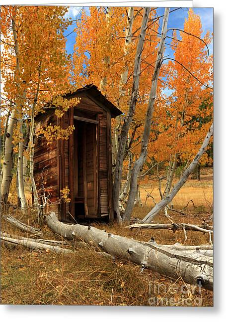 Outhouses Greeting Cards - Outhouse In The Aspens Greeting Card by James Eddy