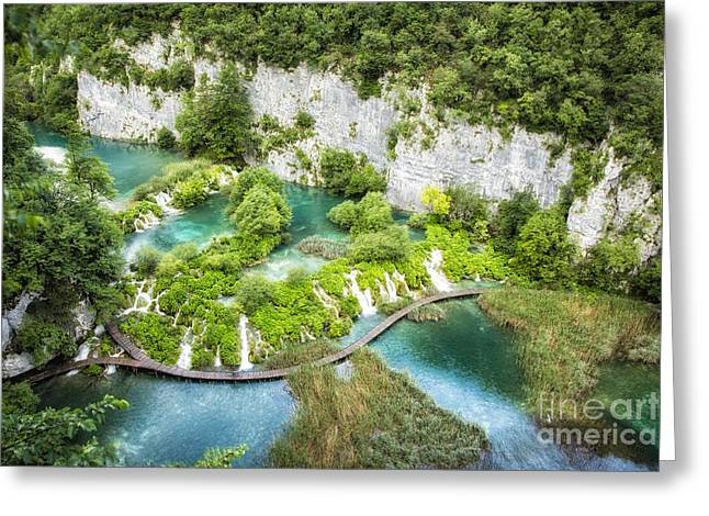 Outlook Greeting Cards - Outlook At Plitvice Greeting Card by Timothy Hacker