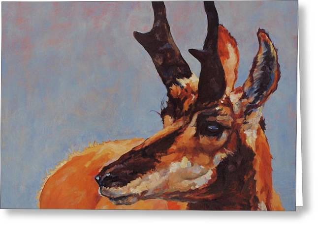 Pronghorn Greeting Cards - Outlook Greeting Card by Patricia A Griffin
