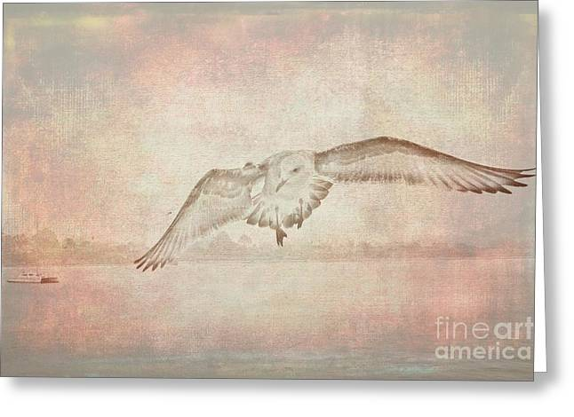 Santa Cruz Art Greeting Cards - Outstretched wings Greeting Card by Scott Cameron