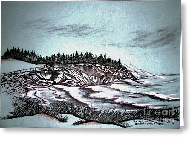 Oven's Park Nova Scotia Greeting Card by Janice Rae Pariza
