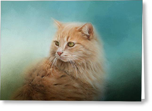 Orange Tabby Greeting Cards - Over Her Shoulder Greeting Card by Jai Johnson