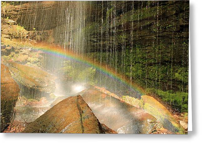 Growing From Rock Greeting Cards - Over the Rainbow Greeting Card by Brenda Donko