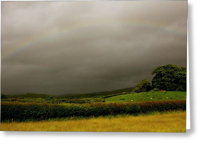 Over The Rainbow Greeting Card by Theresa Selley