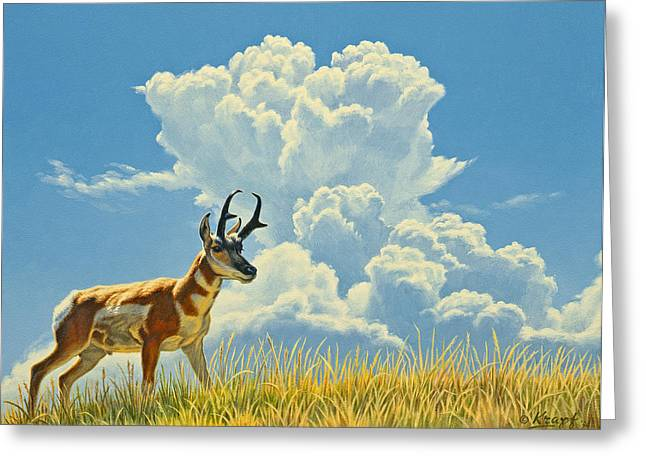 Pronghorn Greeting Cards - Over the Rise Greeting Card by Paul Krapf