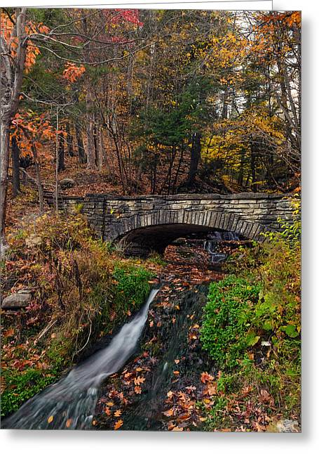 Nature Scene Greeting Cards - Over The Stream Greeting Card by Mark Papke