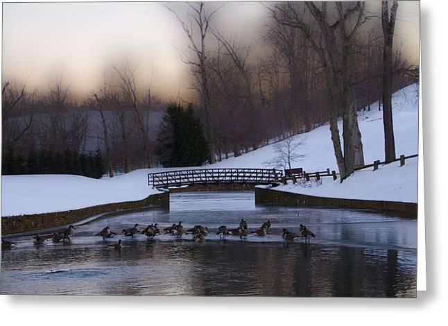 Radnor Greeting Cards - Overbrook Golf Club in Winter Greeting Card by Bill Cannon