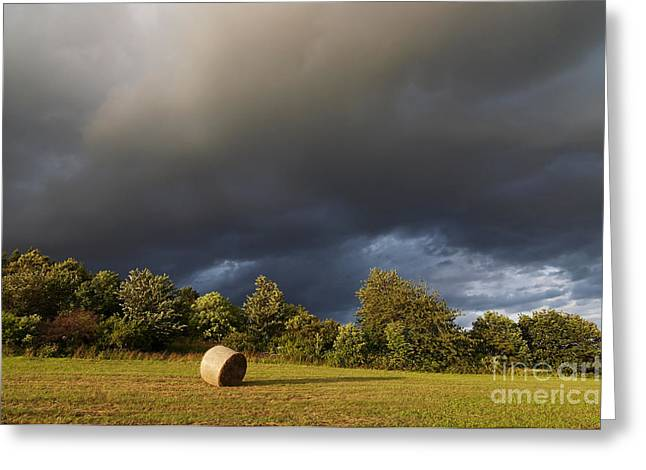 Haying Greeting Cards - Overcast - Before Rain Greeting Card by Michal Boubin