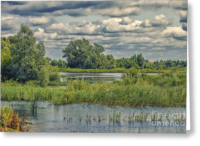 River Flooding Greeting Cards - Overflowing forelands river Greeting Card by Patricia Hofmeester