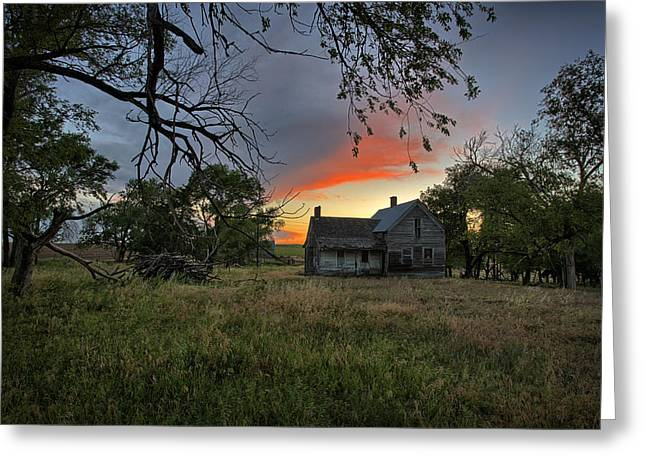 Old House Photographs Greeting Cards - Overgrown Greeting Card by Thomas Zimmerman