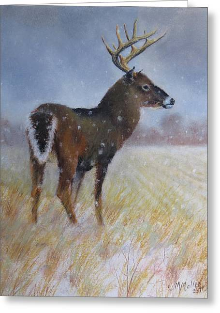 White Tail Pastels Greeting Cards - Overlooking His Domain Greeting Card by Marcus Moller
