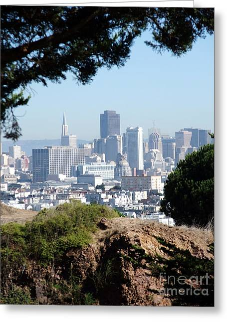 Overlooking The City By The Bay San Francisco  Greeting Card by Jim Fitzpatrick