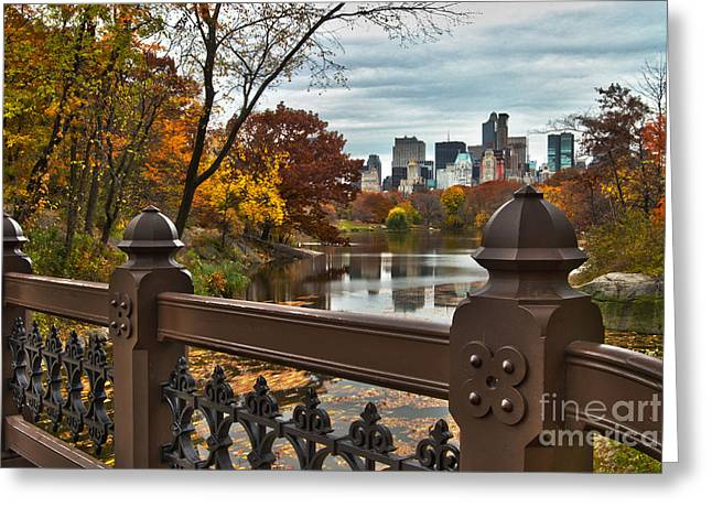 Busybee Greeting Cards - Overlooking The Lake Central Park New York City Greeting Card by Sabine Jacobs