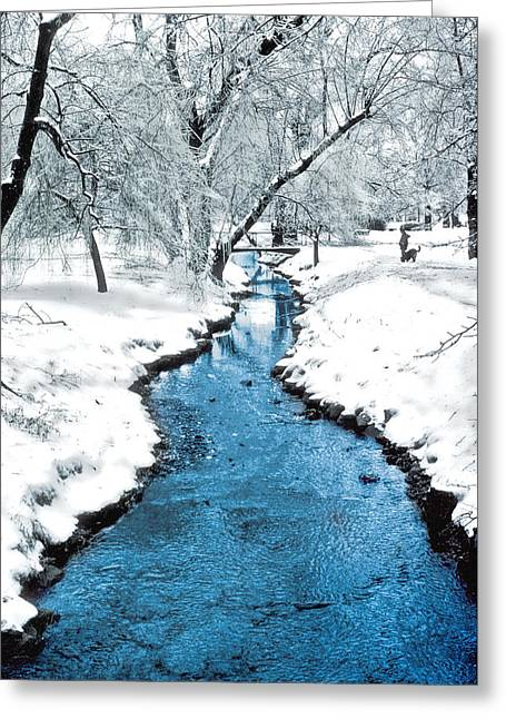 Dog In Snow Greeting Cards - Overnight Snow in Edgemont Park Greeting Card by Kellice Swaggerty