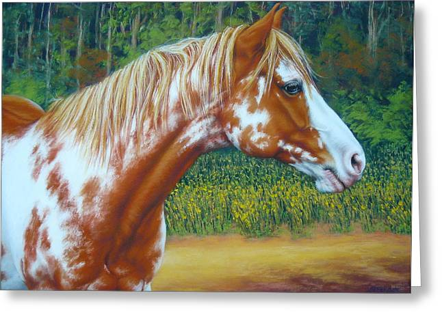 Margaret Stockdale Greeting Cards - Overo Paint Horse-Colorful Warrior Greeting Card by Margaret Stockdale